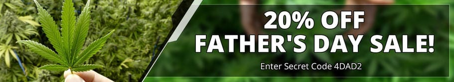 cannabis delivery 2018_Fathers_Day